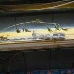 菖蒲(しょうぶ)の飾り