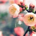 中国の立春