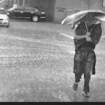 今年瀋陽は雨が多く気温が低い